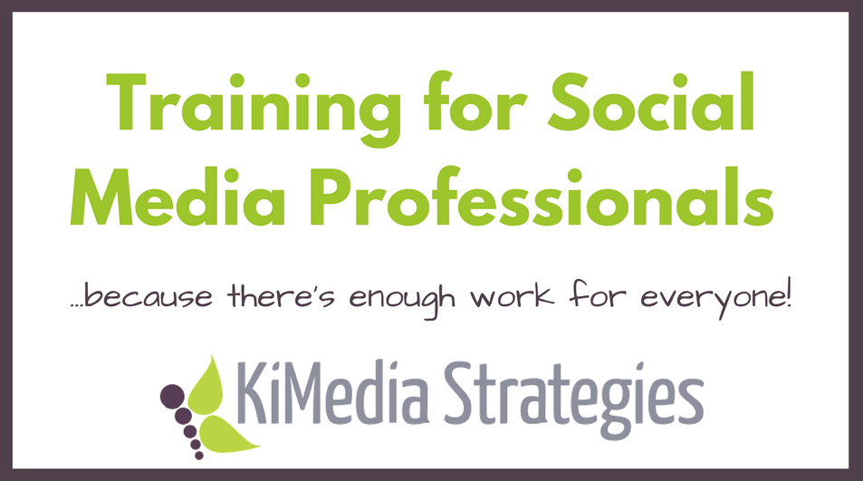 Social Media Professionals Training