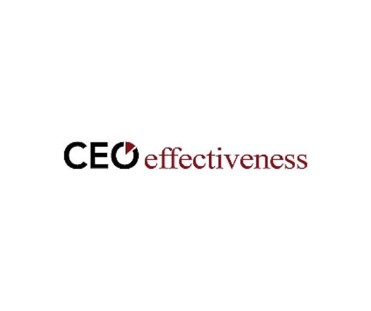 "CEO Effectiveness – ""Business Success Through Self-Knowledge"""